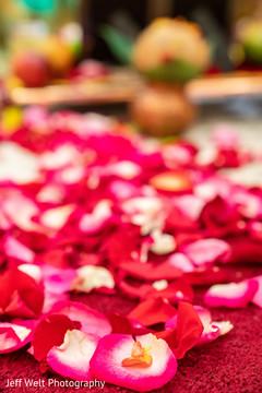 Marvelous Indian wedding rose petals decor.
