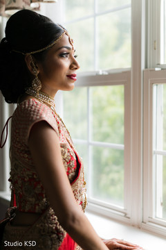 Beautiful Maharani looking through the window