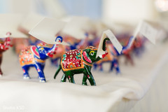 See this beautiful elephant favors