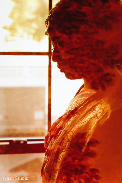 Incredible Maharani's silhouette capture.