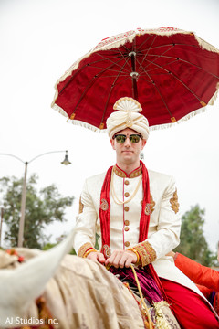 Enchanting Indian groom on his baraat horse.