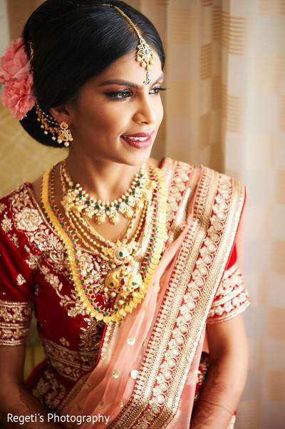 Portrait of stunning Maharani