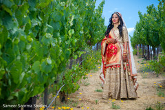 Indian bride posing in a grapevine