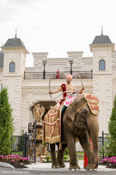 Indian bride riding the elephant