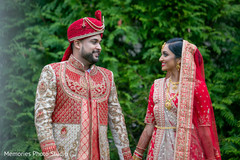Adorable Indian lovebirds first look.
