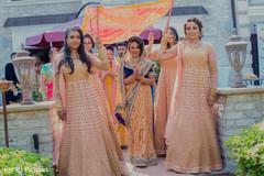 Maharani wonderful entrance capture.