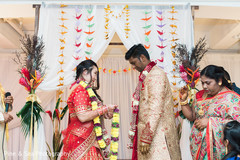 Lovely indian couple exchanging garlands