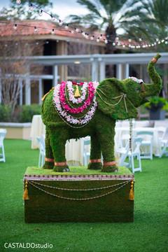 Marvelous Indian elephant decoration.