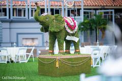 Marvelous Indian wedding elephant decoration.