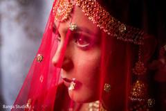 Amazing portrait of Maharani