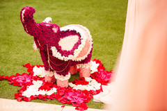See this elephant shaped floral arrangement