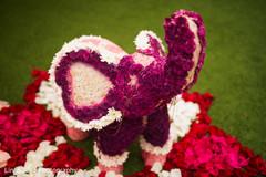 Gorgeous elephant shaped floral design
