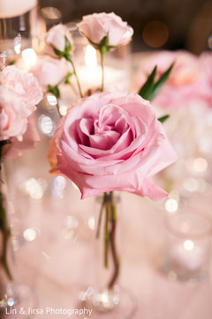Beautiful rose decorating the table