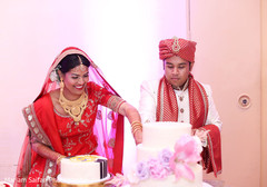 Lovely Indian couple cutting cake capture