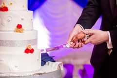Close up capture of Indian couple cutting the cake