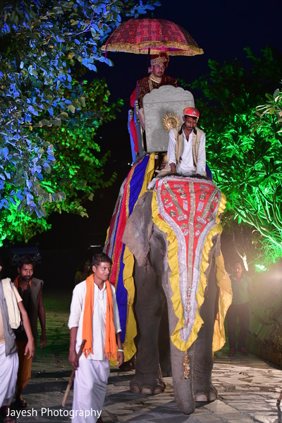 Stunning entrance of rajah on his baraat elephant.
