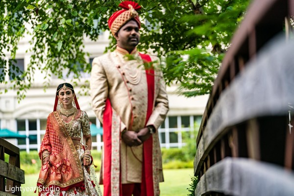 Indian lovebirds magical capture