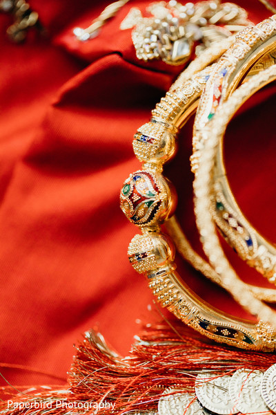 Closeup capture of maharanis golden chooras.