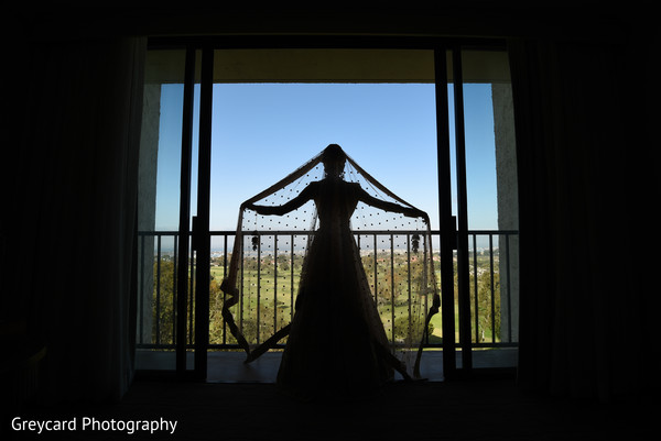 Maharanis silhouette photography.
