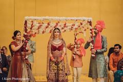 Stunning Maharani making her entrance.