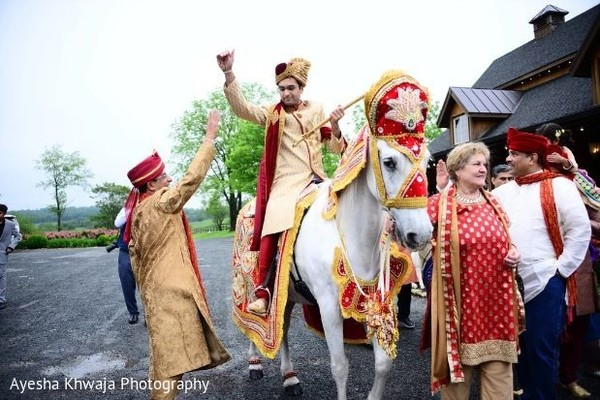 Incredible Indian grooms white baraat horse.