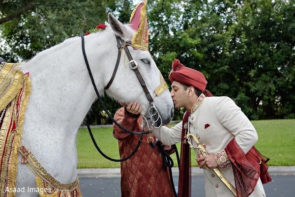 Maharaja with his white baraat horse.