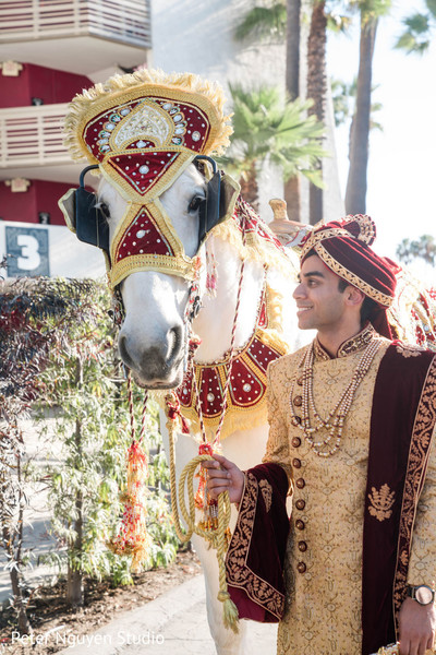 Indian groom holding his white baraat horse.