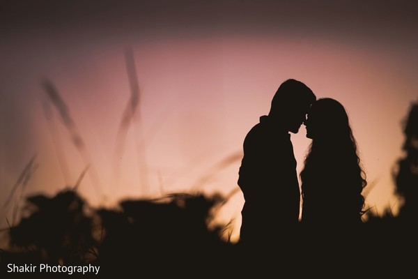 Most romantic captured of Indian lovebirds at sunset