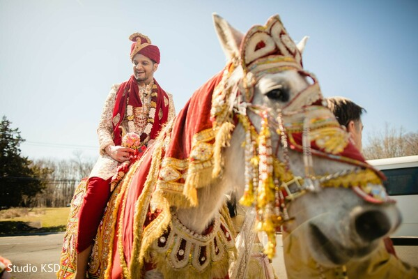 Indian groom riding his Baraat white horse.
