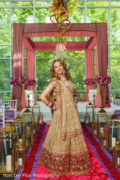 Bridal Portrait in Virginia Beach, VA Indian Fusion Wedding by Noel Del Pilar Photography