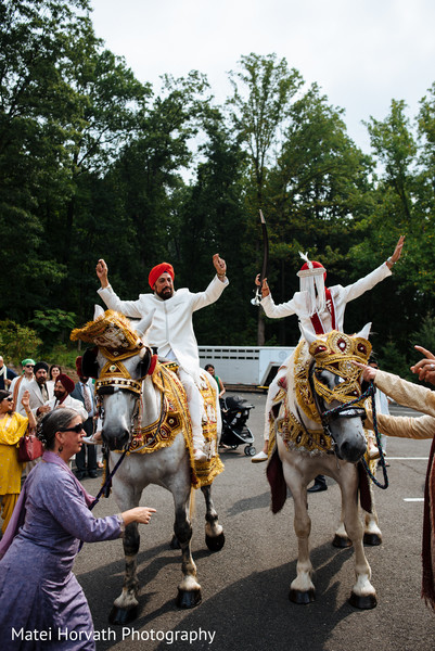Horse for baraat in Somerset, NJ Sikh Wedding by Matei Horvath Photography