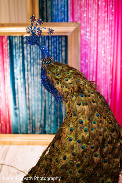 peacock theme,peacock details,peacock,peacocks,peacock accents,peacock elements,peacock decor,peacock-inspired wedding,peacock-inspired,peacock-themed