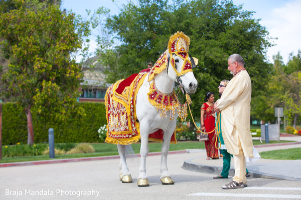 Horse for baraat in Westlake Village, CA Indian Wedding by Braja Mandala Photography