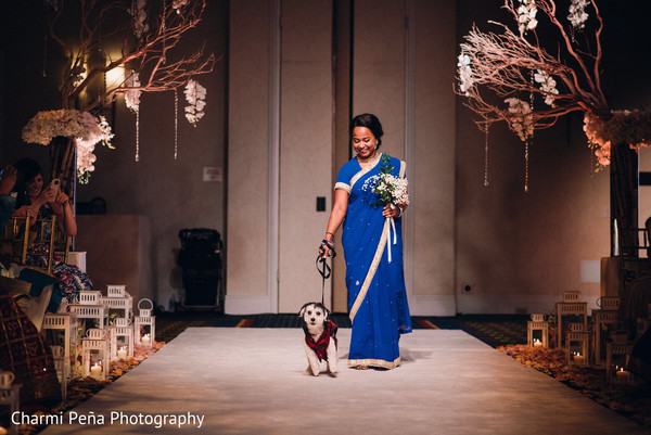 Wedding dog in Morristown, New Jersey Indian Wedding by Charmi Peña Photography