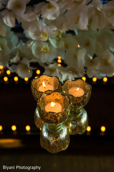 Reception Decor in Houston, TX South Asian Indian Wedding Engagement by Biyani Photography