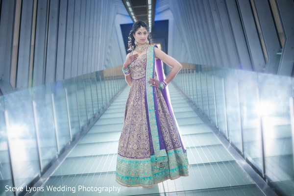 Indian Bridal Portrait in Columbus, Ohio Indian Wedding by Steve Lyons Wedding Photography