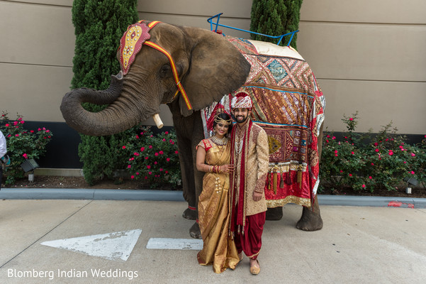 indian couple,elephant,wedding details
