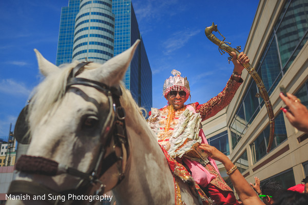horse,indian wedding baraat,horse for indian groom,indian weddings,indian wedding transportation,transportation for indian wedding,baraat for south asian wedding
