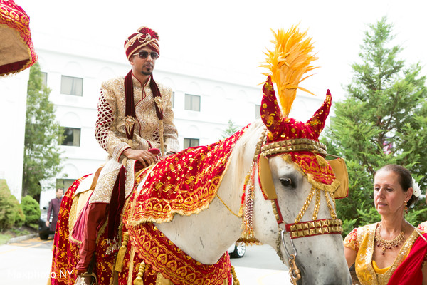 indian wedding baraat,white horse baraat