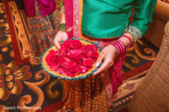 mehndi art,indian wedding henna,indian wedding photography