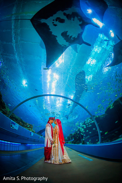 indian wedding first look,aquarium,indian wedding venue